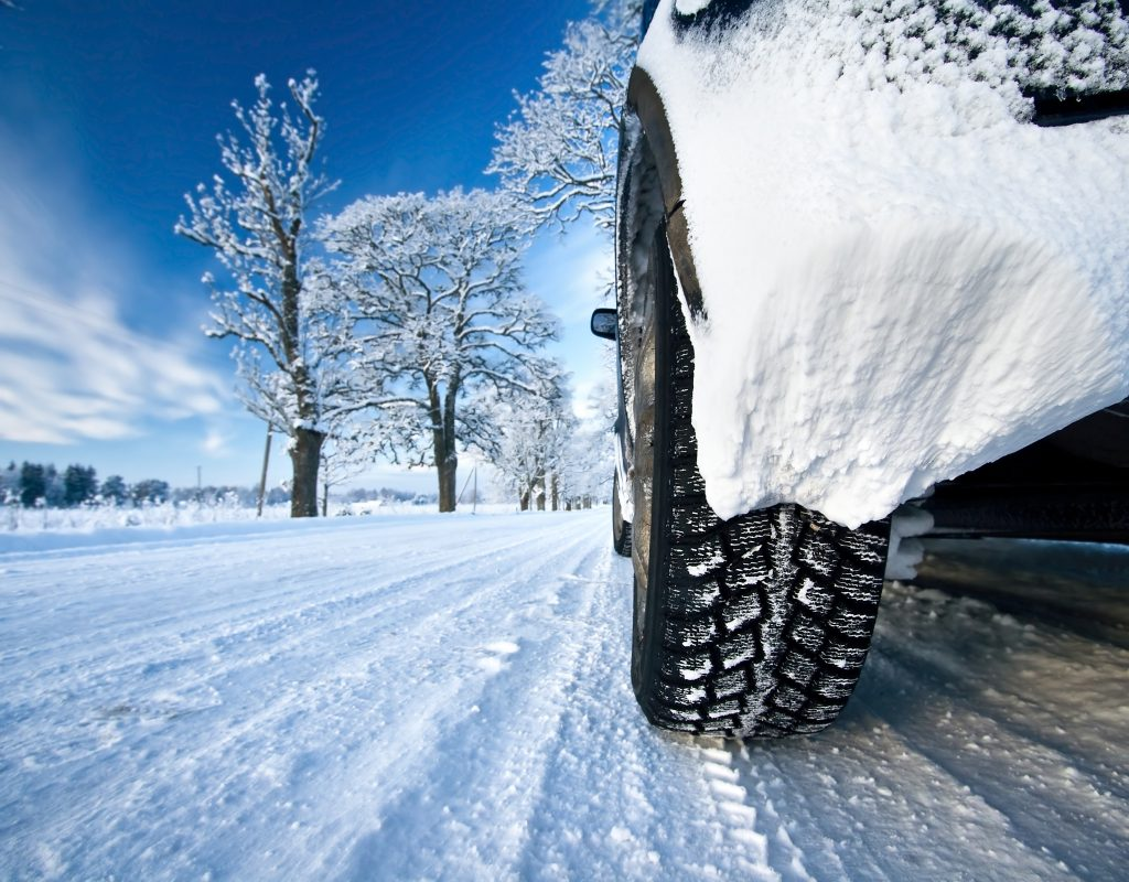 Cat tires on snowy road